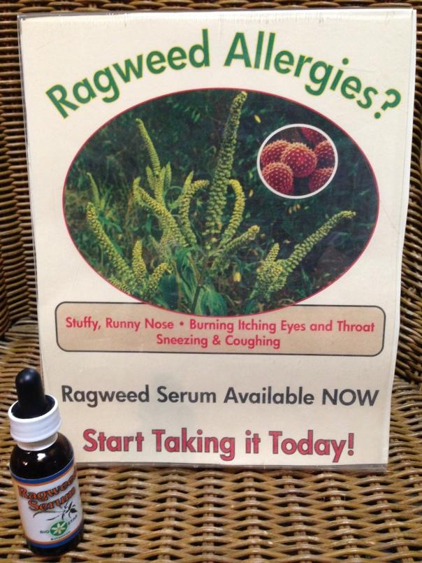 Ragweed Pic